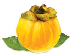 garcinia fruit